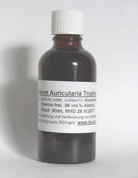 100ml Auricularia Tropfen, Judasohr Extrakt, Auricularia judae Konzentrat - Bild vergrößern