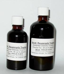100ml Cordyceps Tropfen, Raupenpilz Extrakt, Konzentrat - Bild vergrößern